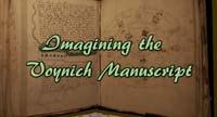 "Hypatia Pickens' build at Burn 2, ""Imagining the Voynich Manuscript"""
